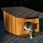 1)-Будки для кошек