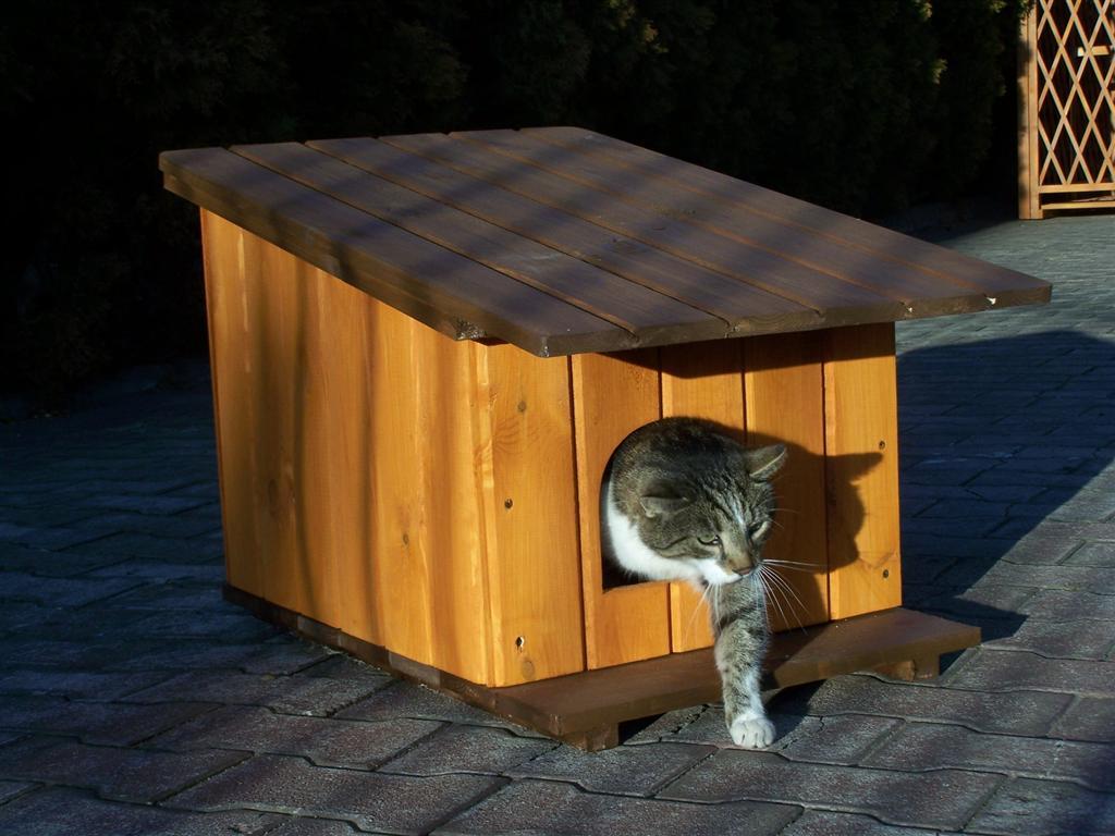 какому теплый домик для кошки фото ряд